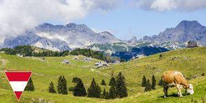 Ustanovitev podjetja v Avstriji