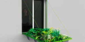 Poslovna priložnost: vrt na okenski polici