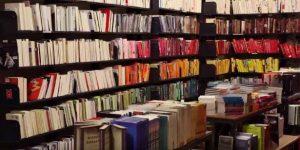Knjige: največje bogastvo in najlepša darila