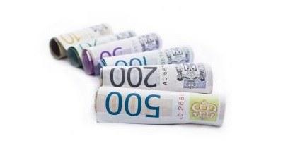 Razpis: Sofinanciranje razvojnih projektov