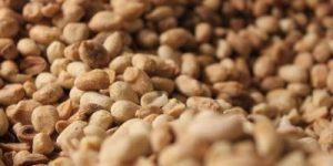 Slovensko arašidovo maslo gre na Kickstarter