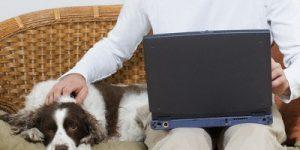 Nasveti za podjetnike: Vodenje podjetja od doma