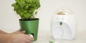 Poslovna priložnost: mini kompostnik