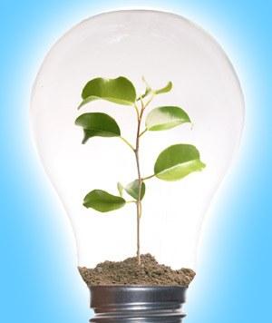 Ideje za ekološko osveščena podjetja - 1.del