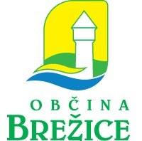 Pospeševanje razvoja podjetništva v Občini Brežice za leto 2011