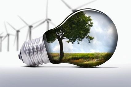 Tudi zelena podjetja morajo ustvarjati dobiček