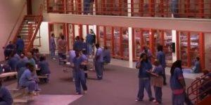 So lahko zaporniki tudi podjetniki?