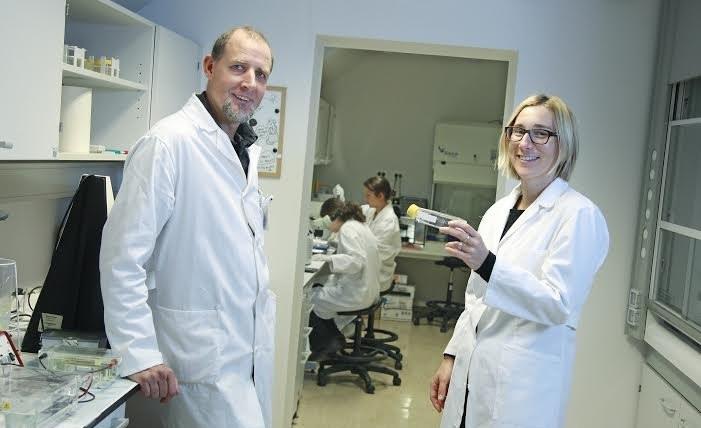 Zdravljenje živali z matičnimi celicami na vidiku – Animacel