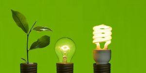 8 vplivnih zelenih trendov