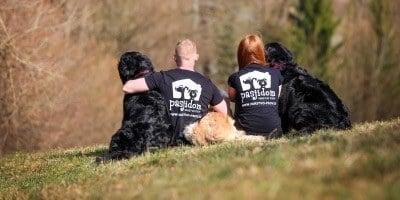 Domžalčanka, ki je našla sanjsko službo med psi