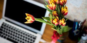 Email marketing kampanje naj vsebujejo dodano vrednost
