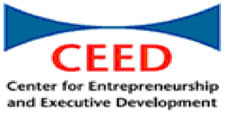 Intervju z Nino Božič, direktorico CEED Slovenije