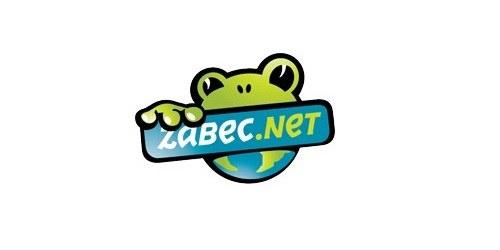 Zabec.net: gostovanje in domene