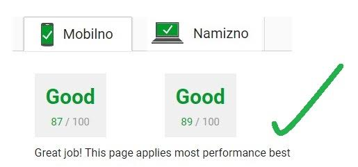 Google Site Speed - dober rezultat