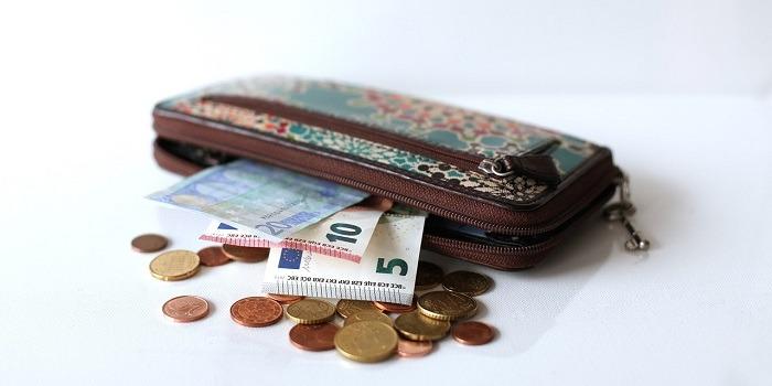 Razpis, financiranje, investicija