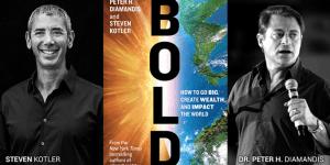 Predlog za branje: BOLD: How to Go Big, Create Wealth and Impact the World