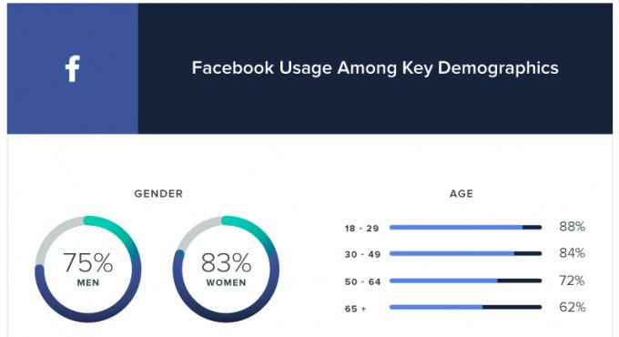 Facebook statistike demografski podatki