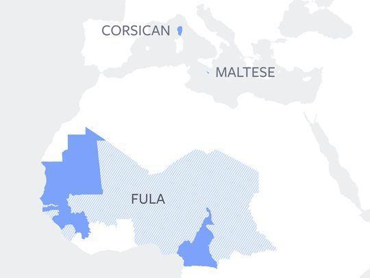 Facebook statistike jeziki