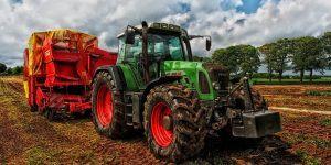 Dopolnilna dejavnost na kmetiji kot možnost dodatnega zaslužka