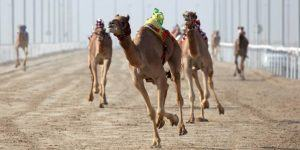 Slovenski Protocamel do odmevnega posla v Omanu