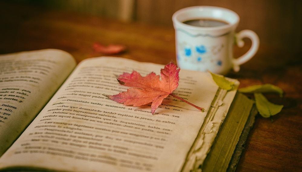 Podjetniške knjige, ki vam jih priporočamo v branje (Vir: Pixabay)