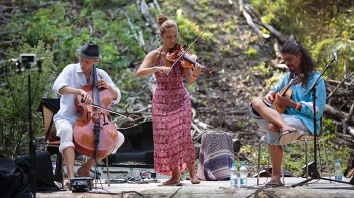 Glasbena skupina Wild Strings Trio zbira sredstva za izdajo novega albuma (Vir: Kickstarter)